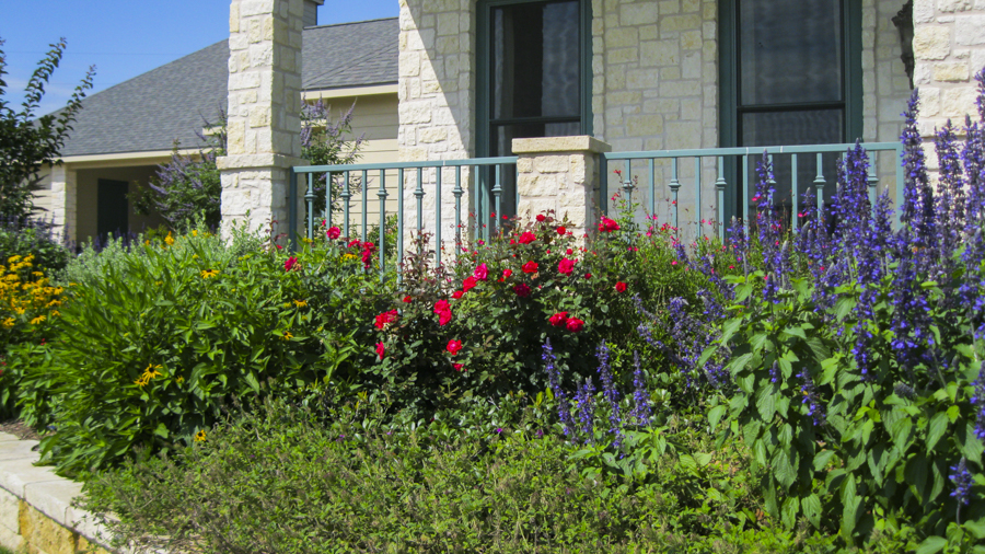 flowers and native plants landscape design in Chappell Hill, Texas